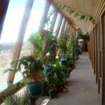 Plants inside the Earthship